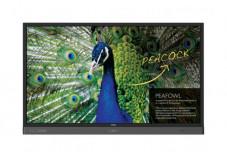 BenQ RP704K afficheur professionnel 4K tactile 70
