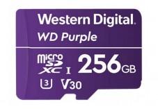 WD Carte Micro SDXC Class V30 250 Go