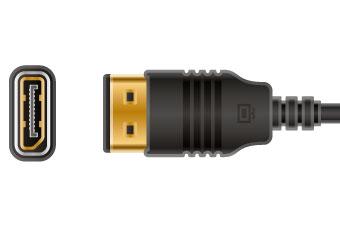 DisplayPort Haute Qualité